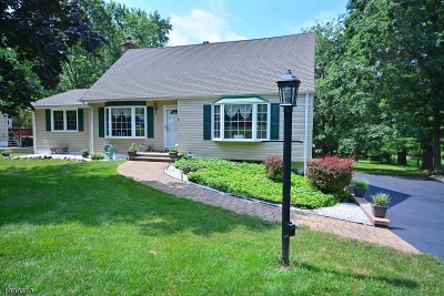 Bridgewater Twp. Single Family Home For Sale: 1258 Washington Valley Rd