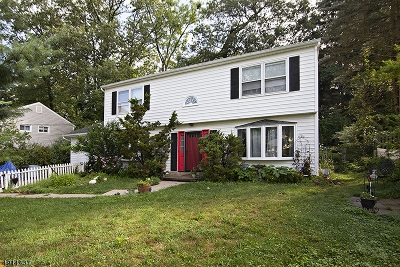 Roxbury Twp. Single Family Home For Sale: 83 Ford Rd