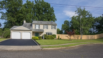 Franklin Twp. Single Family Home For Sale: 15 Norfolk Rd