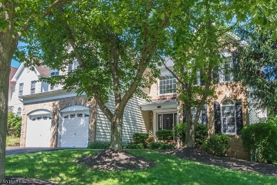 Bernards Twp. Single Family Home For Sale: 29 Watchung Dr