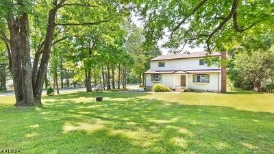 Chester Boro Single Family Home For Sale: 122 Fairmount Ave