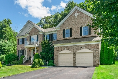 Mount Olive Twp. Single Family Home For Sale: 8 Red Maple Ln