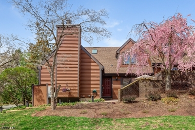 Somerset County Condo/Townhouse For Sale: 45 Aspen Dr