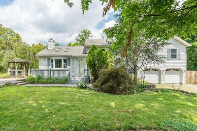 Parsippany-Troy Hills Twp. Single Family Home For Sale: 23 Sandra Ct
