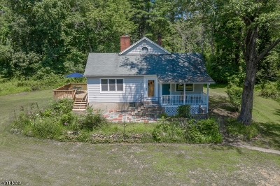 Alexandria Twp. Single Family Home For Sale: 179 Lt York-Pattenburg Road