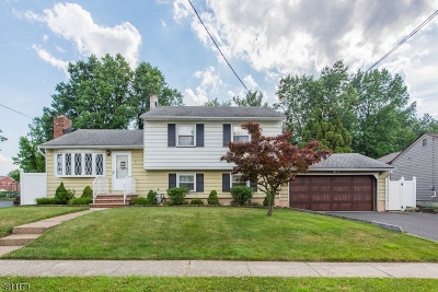 Edison Twp. Single Family Home For Sale: 41 Terry Ave