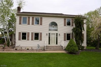 East Hanover Twp. Single Family Home For Sale: 17 Garden St