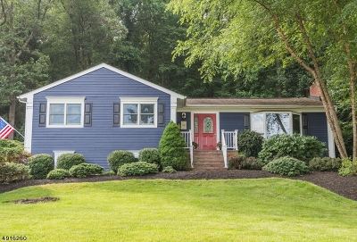 Randolph Twp. Single Family Home For Sale: 47 Radtke Rd