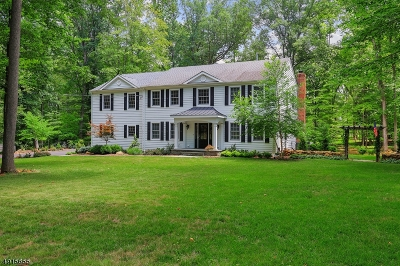 Somerset County Single Family Home For Sale: 10 Flintlock Dr