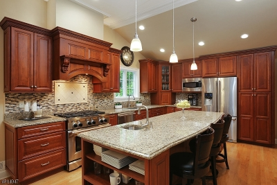 Somerset County Single Family Home For Sale: 14 Sage Dr