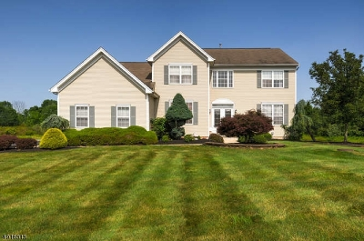 Somerset County Single Family Home For Sale: 9 Peoples Line Rd
