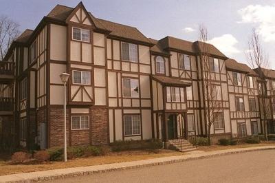 Morris Twp. Condo/Townhouse For Sale: 81 Village Dr #81