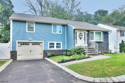 Scotch Plains Twp. Single Family Home For Sale: 316 Farley Ave