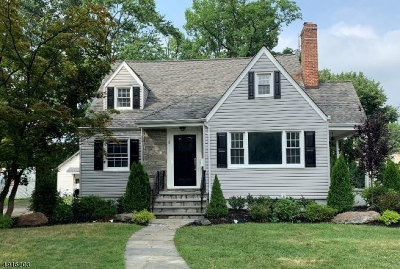Westfield Town Single Family Home For Sale: 1033 Columbus Ave