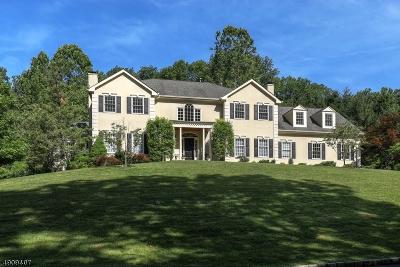 Mendham Twp. NJ Single Family Home For Sale: $1,325,000