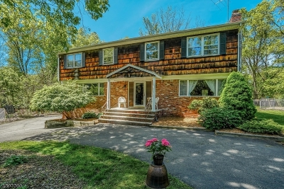 Franklin Lakes Boro Single Family Home For Sale: 245 Tortoise Ln