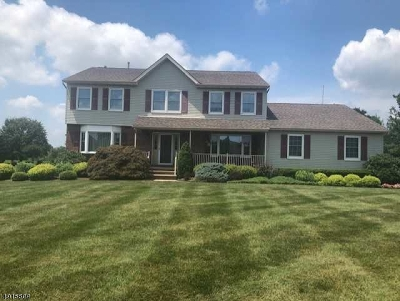 Somerset County Single Family Home For Sale: 9 Laird Ter