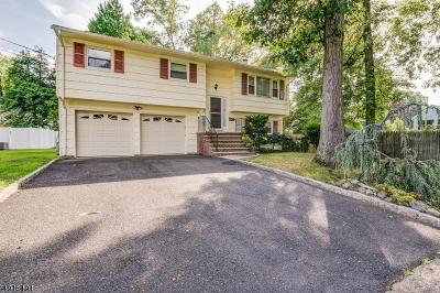 Fanwood Boro Single Family Home For Sale: 25 Roosevelt Ave