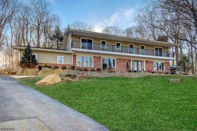 Bernardsville Boro NJ Single Family Home For Sale: $895,000