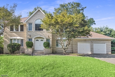 Parsippany-Troy Hills Twp. Single Family Home For Sale: 33 Continental Rd