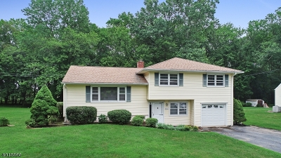 Florham Park Boro Single Family Home For Sale: 150 Crescent Rd