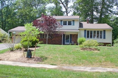 Parsippany Single Family Home For Sale: 40 Maplewood Dr