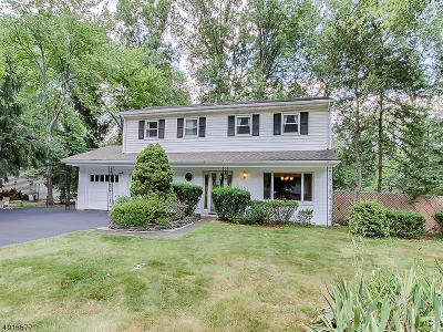 Parsippany-Troy Hills Twp. NJ Rental For Rent: $3,150