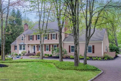 Bernards Twp. Single Family Home For Sale: 67 Stockmar Dr
