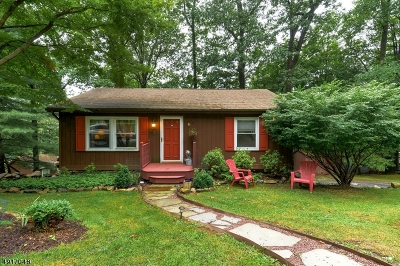 Bethlehem Twp., High Bridge Boro Single Family Home For Sale: 8 Deer Run Dr