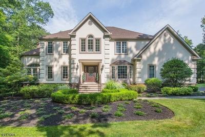 Rockaway Twp. Single Family Home For Sale: 221 Old Beach Glen Rd