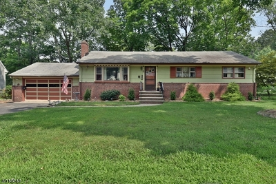 Oakland Boro Single Family Home For Sale: 121 Hiawatha Blvd