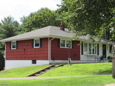 Clinton Town Single Family Home For Sale: 11 Lingert Ave