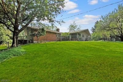 Mendham Twp. NJ Single Family Home For Sale: $475,000