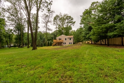 Somerset County Single Family Home For Sale: 43 Valley View Rd