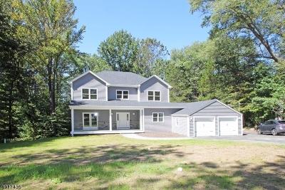 Boonton Twp. Single Family Home For Sale: 11 Kincaid Rd