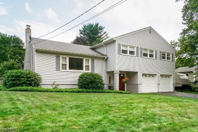 Roxbury Twp. Single Family Home For Sale: 39 Toby Drive
