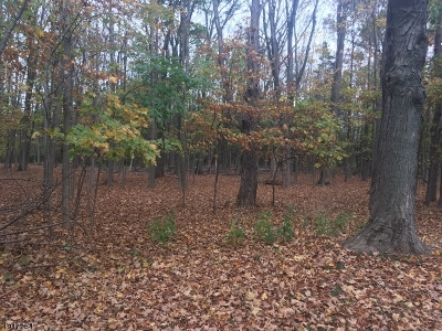 Somerset County Residential Lots & Land For Sale: 18 Sunnybranch Rd