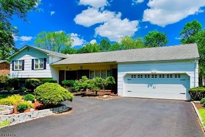 Montville Twp. Single Family Home For Sale: 8 Merlin Pl