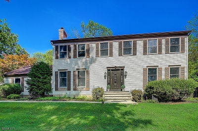 Raritan Twp. Single Family Home For Sale: 33 Honeyman Dr