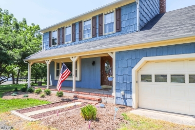 Branchburg Twp. Single Family Home For Sale: 2312 S Branch Rd