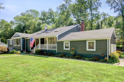 Mountainside Boro Single Family Home For Sale: 320 Timberline Road