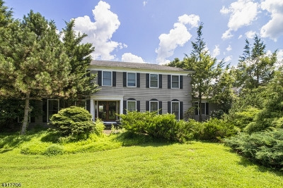 Raritan Twp. Single Family Home For Sale: 10 Britton Dr