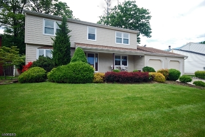 Edison Twp. Single Family Home For Sale: 29 Visco Dr