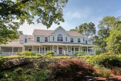 Newton Town Single Family Home For Sale: 11 Overlook Rd