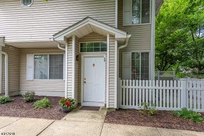 Bedminster Twp. Condo/Townhouse For Sale: 59 Academy Ct