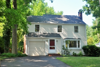 Westfield Town Single Family Home For Sale: 751 Clark St