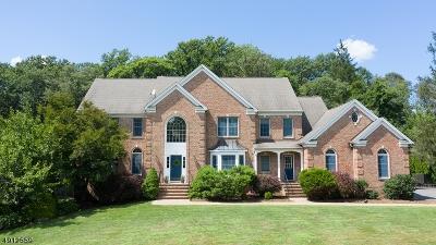 Randolph Twp. Single Family Home For Sale: 10 Lake Cherokee Dr