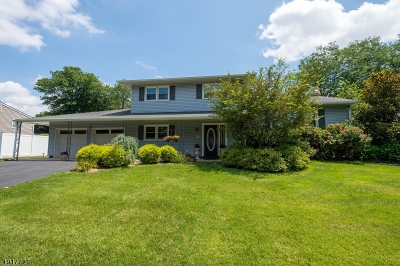 East Brunswick Twp. Single Family Home For Sale: 14 Queens Road