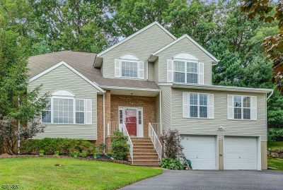 Boonton Town Single Family Home For Sale: 18 Gregory Dr