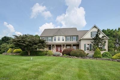 Raritan Twp. Single Family Home For Sale: 38 Mason Farm Rd